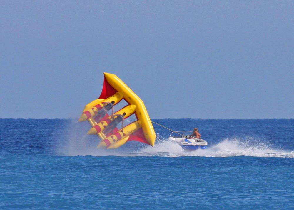 FlyFish03.jpg